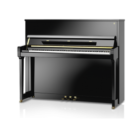 FRIDOLIN SCHIMMEL 123 Tradition - Centre Chopin