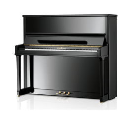 SCHIMMEL C130 tradition TwinTone - Centre Chopin