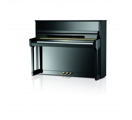 SCHIMMEL Classic 116 Tradition TwinTone - Centre Chopin