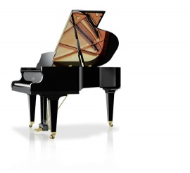 SCHIMMEL Classic 169 Tradition - Centre Chopin