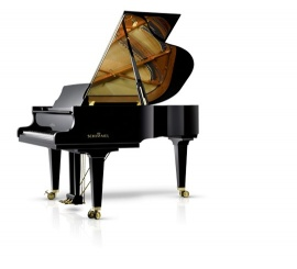 SCHIMMEL Konzert 175 Tradition - Centre Chopin